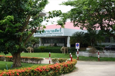 カセサート大学付属動物病院