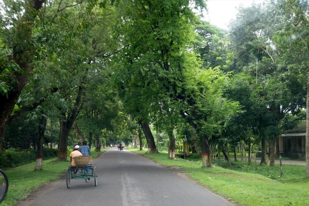 緑豊かなキャンパス